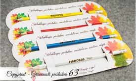 Reklaminiai pieštukai, pieštukai su vardu ar logotipu