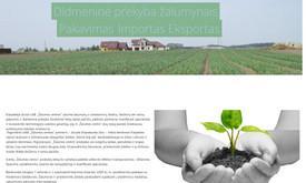 Svetainių kūrimas ir priežiūra