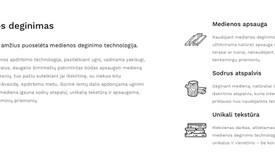 Tekstų kūrėja / Copywriter / Content Strategist (LT ir EN)