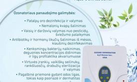 Gintarė Česnaitė