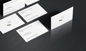 Grafinis dizainas / WEB dizainas