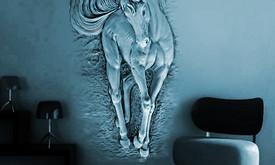Interjero Dizainerė-dekoratorė