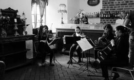 Styginių duetas/kvartetas