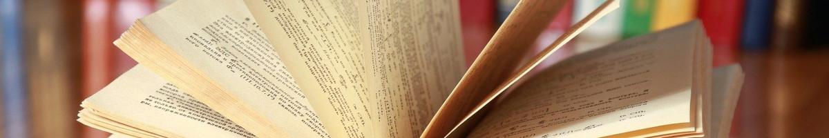 Studentų konsultavimas rengiant rašto darbus