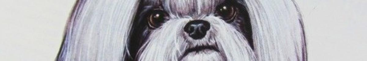 Šunų kirpimas Šeškinėje