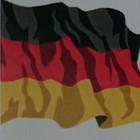 Vokietijos + Vokiečių k. specialistas (DE-LT-RU)