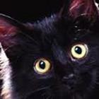 Marius Katinas