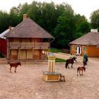 Kęstutis Sodybos nuoma Rumšiškių muziejuje