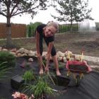 Kristina Pavilonienė Aplinkos tvarkymas, apželdinimas