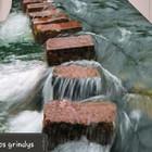 Robertas Busnevas Tarkett (pvc)  ir  epoksidinių liejamos grindų dengimas.