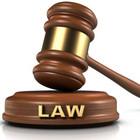 Konsultantė Agata Teisės rašto darbai