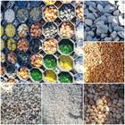 Žemaitijos granitas