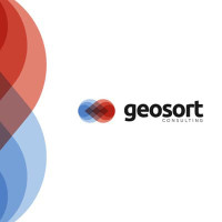 Geosort consulting