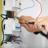 Elektos darbai