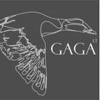 Gaga lt komanda